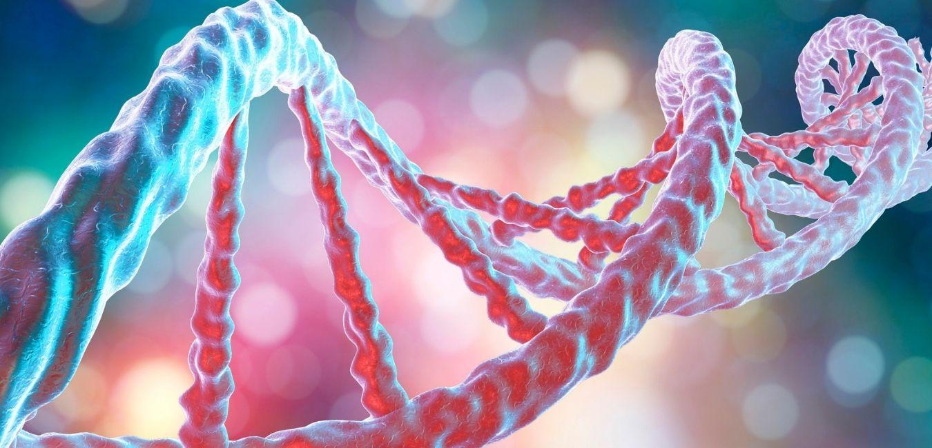 Za procesy starzenia się odpowiadają nasze geny.