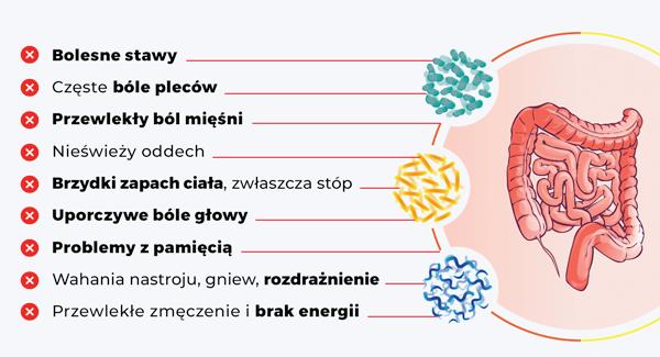 Zaburzenia mikroflory jelitowej